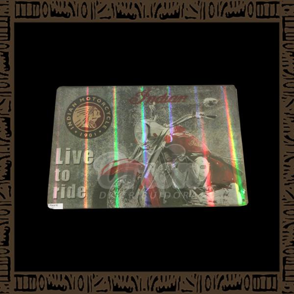 Quadro Decorativo de Parede 20x30 - Placa 037 Indian Live to Ride - YPLC-204